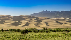 Great Sand Dunes '17-16