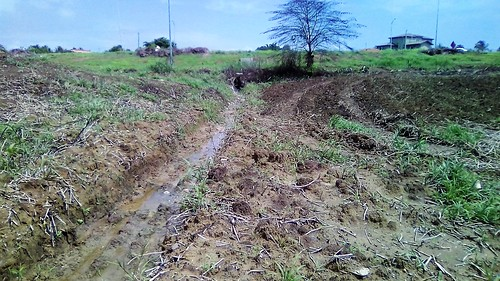 Drainage from Pt. Fortin Highway onto my land...
