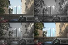 Contrasts in Zamalek