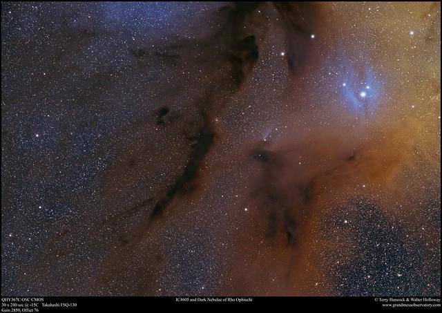 Panel 3. IC4605 and Dark Nebulae of Rho Ophiuchi