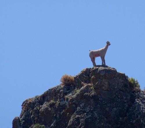 Mountain statue, Quentar
