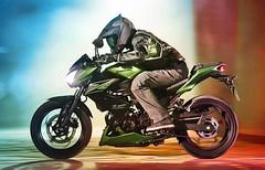 Kawasaki Z 300 2016 - 15