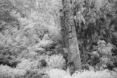 More Totem Poles