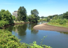 Duwamish River and BECU headquarters... 20130809_0525