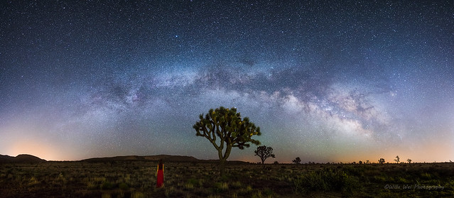 Into the desert, Nikon D810, AF-S Nikkor 20mm f/1.8G ED