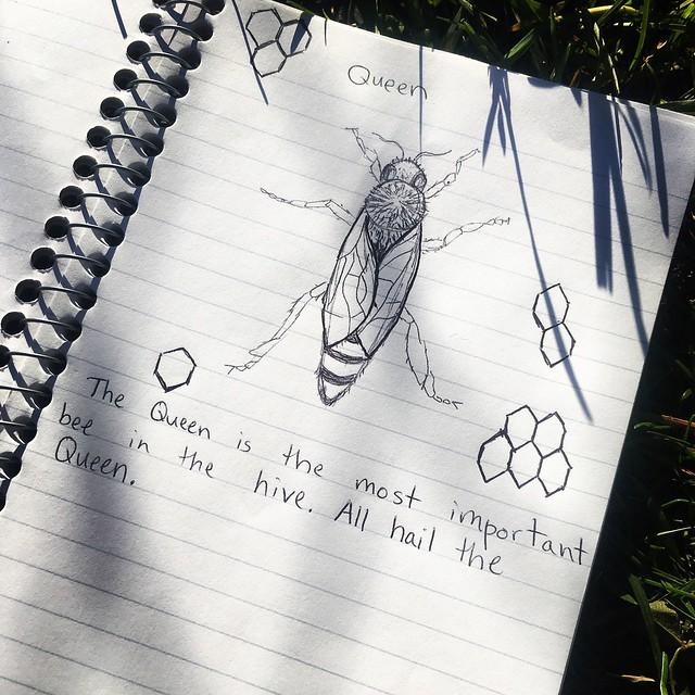 Bee journal
