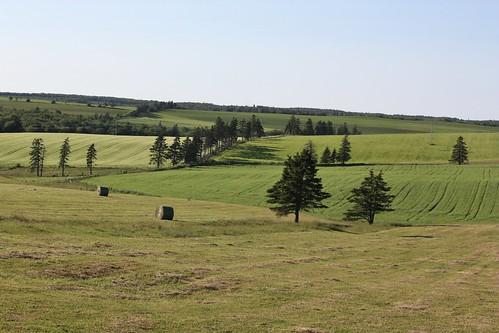 fredericton pei canada hills farmland fields hay