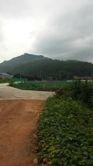 아침풍경 | 장암산(견훤산성)