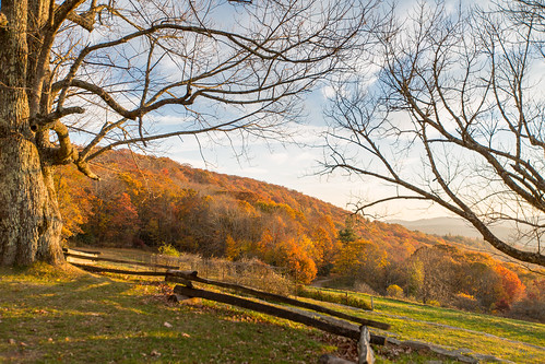 photosbymch landscape fallcolors autumn leaves trees splitrailfence mosesconemanor blueridgeparkway appalachianmountains northcarolina usa canon 5dmkiii 2016 outdoors
