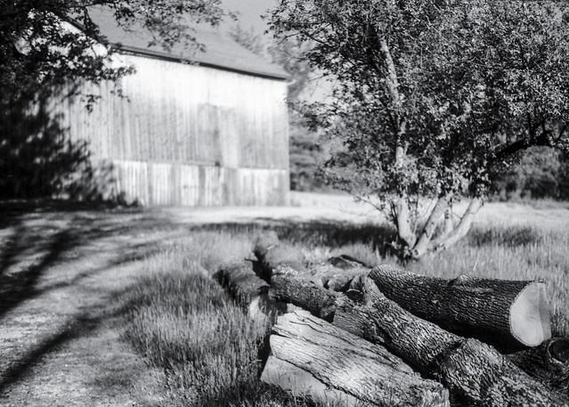 Logs & Barn