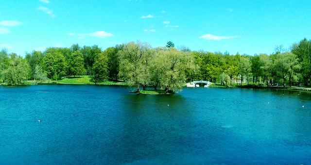 Gatchina park (4)