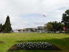 Victoria Harbor & Skyline