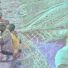 Gestione sanitaria dei richiedenti asilo: tubercolosi e le altre