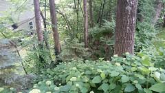 Stonehedge PA Garden