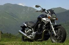 Yamaha BT 1100 BULLDOG 2002 - 13