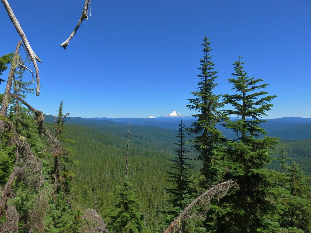 Mt. Rainier, Mt. Adams and Mt. Hood