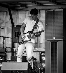 Music at the Olive Branch - Wimborne Minster Folk Festival 2017