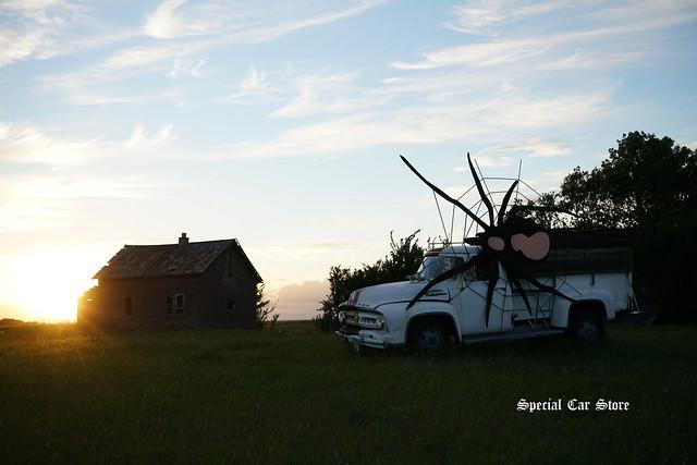 Prairie Survivor 2017