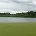 20170714 Wlk frm Clumber_0012 Clumber Lake frm Weir