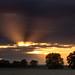 Horbling Fen Sunset