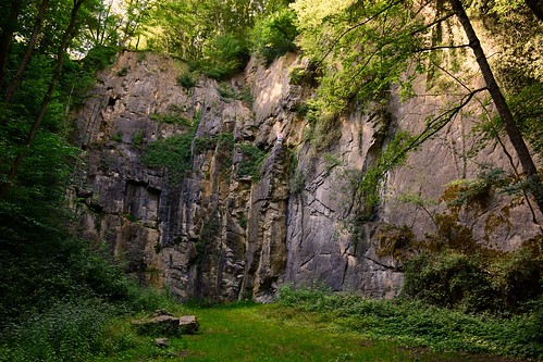 belgium belgique climbing nature forest jacquesteller nikond7200 quarry stone scale green manmade