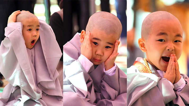 Beragam ekspresi samanera kecil dari terkejut hingga merasa mengantuk setelah rambut mereka di cukur