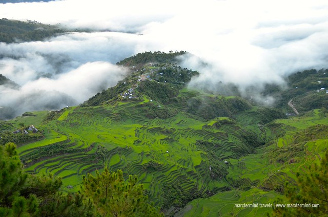 Maligcong Rice Terraces as Viewed from Mt. Kupapey