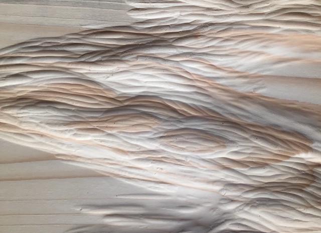 キャノン茉耶 個展「かみ」を開催します