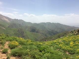 Hawraman Mountains