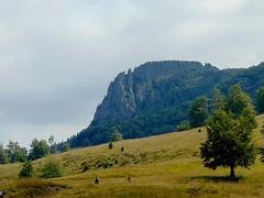 munții gutâi-drumeție și popas/gutai mountains