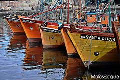 Puerto MDP