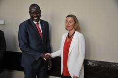 Federica Mogherini attends the G5 Sahel in Mali, June 2017