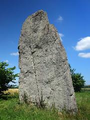 Le menhir dit « La Pierre Longue » près d'Iffendic - Ille-et-Vilaine - Juin 2017 - 08 - Photo of Boisgervilly