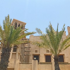 Under the hot summer sun #Dubai #ramadan #UAE #madinatjumeirah #palmtrees