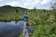 Daks: Scott Looking for Birds