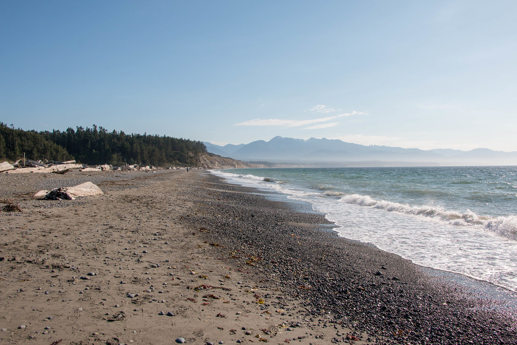 07.06. Dungeness Spit