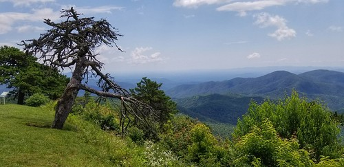 blueridgeparkway mountains northcarolina