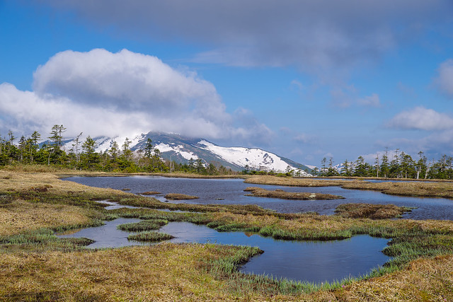 山頂付近に雲がかかる至仏山@アヤメ平
