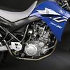 Yamaha XT 660 R 2004 - 4