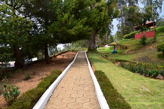 Walkway in Government Rose Garden, Ooty