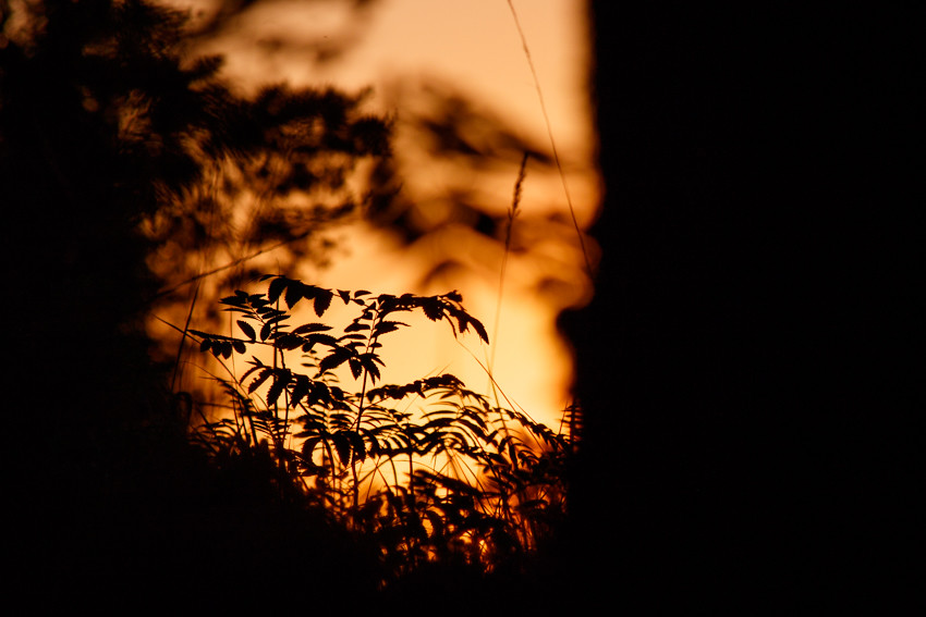 24h issikkavaellus sahalassa-4507