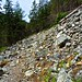 Small photo of Up another talus slope