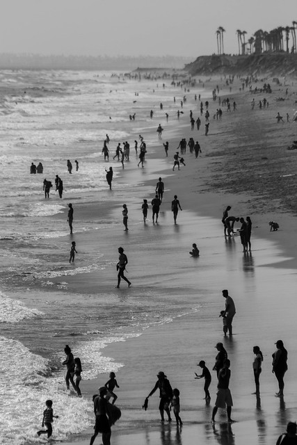 Coastal Monochrome