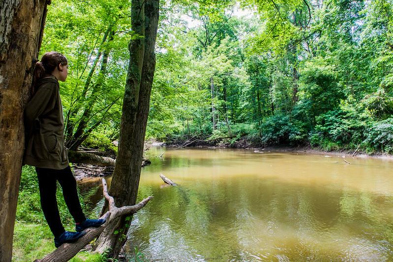 Dustin Nature Preserve - June 22, 2017