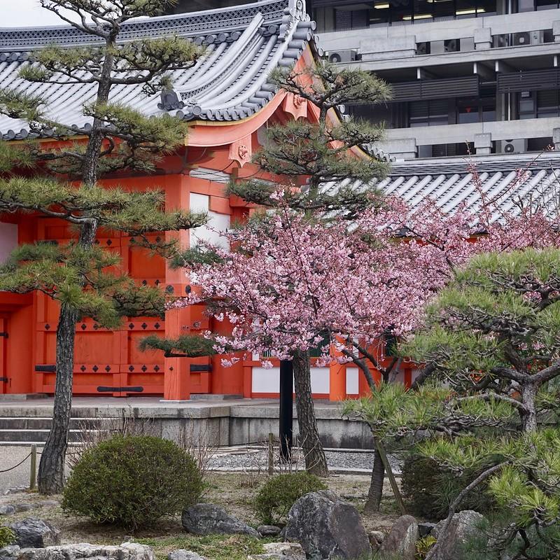 Sanjusangendo Temple Grounds