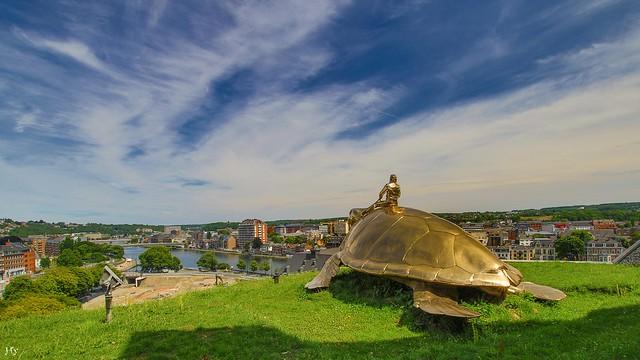 Our Turtle -Belgium