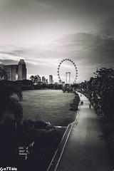 Leading lines  #sonya6300 #a6300 #a6000 #sonya6000 #sonyalpha #sony #explore #travel #sonyshooter #justgoshoot #sonyalphagang #sonyimage #adobelightroom #sigma #bokehkillers #streetphotography #streetshooter #ishootraw #killeverygram #amazingphotohunter #