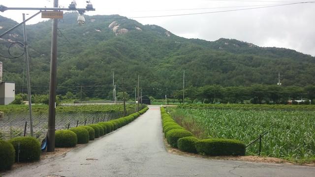 동네한바퀴 | 화북초등학교
