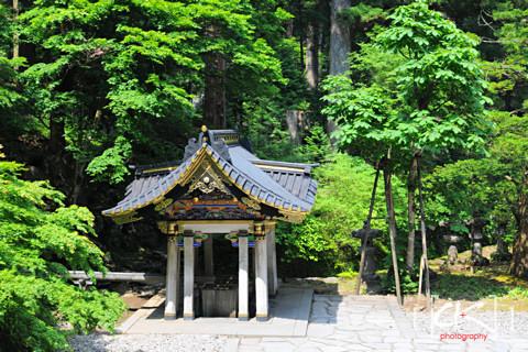 Japan_1299