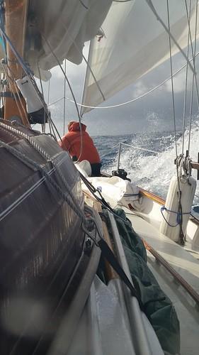 staysail taming